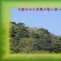 平和の砦575『 万緑や心に非戦の誓い満つ 』yrv2807