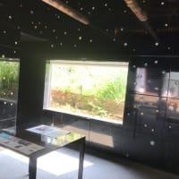 秋の瀬戸内芸術祭へ 2泊4日 ② 女木島から男木島