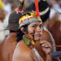 シュナイダー司教はアマゾン地域のための特別シノドスの討議要綱に反対する:十字架の福音の代わりに、地上の生活の福音、胃袋の福音、自然の礼拝、森の礼拝、水と太陽を礼拝する福音を宣教している
