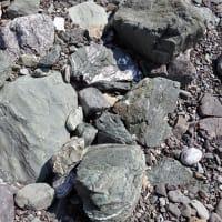 天然記念物三破石の緑
