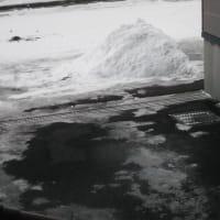 冬は家の敷地内がトイレ!!