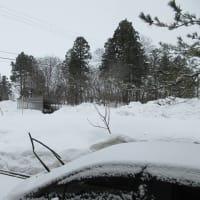またも大雪の予報?!