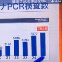 日本に暮らす人を守る気がない安倍政権。新型コロナ対策、検査数は日本が1日900人VS韓国1日7500人、予算は日本130億円(来年度はゼロ)VSシンガポール5000億円、韓国1兆3700億円。