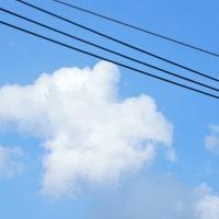 8/13 昨日の午後の雲 夏らしい雲