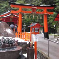 婚活成功を願い、箱根神社のパワースポットへ