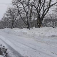 札幌・街の一コマ : 雪の地層