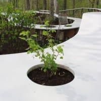 北海道ガーデンショー2015大雪