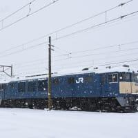 本日の撮影 南松本にて、雪の中でお休みのEF64-1044号機