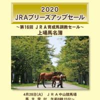 【2020 JRAブリーズアップセール(2歳)】の「個体情報早期開示&内視鏡動画」が公開!