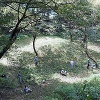 滝山城跡景観維持回復活動「弁天池跡」実は・・・ 2020/8/30