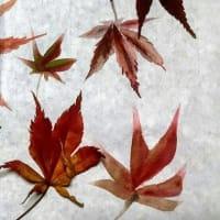 墨彩画で描く 「楓」の 紅葉