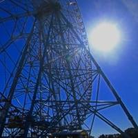 葛西臨海公園 水仙を見に>>追加 北新田ダイヤモンド