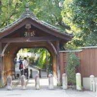 東福寺の萩