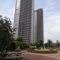 グランツリー武蔵小杉(グランツリーむさしこすぎ)から見たタワーマンション