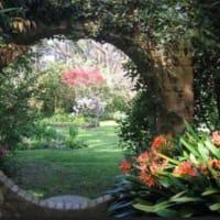 自分の内側に楽しく変化を与える「自分の内なるお庭」の誘導瞑想