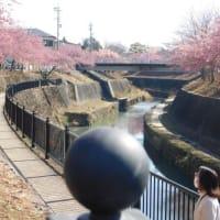 てくてく太田川を行く⑥ 〔災害改修後の逆川〕