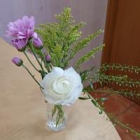 今週のお花 15