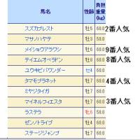 第19回 京都ジャンプステークス(J・GIII)