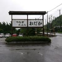 食事処おだか「鉄火重」(長生郡睦沢町)