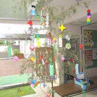 公民館に七夕飾りが飾ってありました。