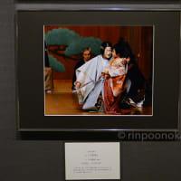 能楽写真家協会 写真展 「能の至芸 人間国宝の芸」