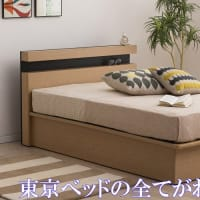 東京ベッド トキオ ファイテンX50 プロフェッショナル 【完全保存版】