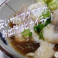 三種の仁義鍋🍲なんちゃって^安い奴気分のお出汁作りウマウマ鍋&落ち葉拾い三昧