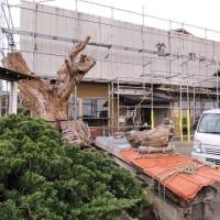 いすみ市日在『 野瀬銘木店 』× ⌂外房の家イノベーションプロジェクト!! は、明日から植栽工事の大詰めに入ります!!