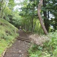 今年最高の蒸し暑さに負けて花立山荘で下山した丹沢;塔ノ岳(2019年22回目)