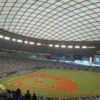 メットライフドーム観戦2019.07.20