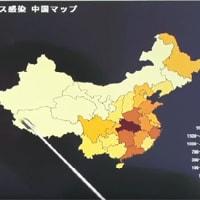 【中国はウィルス情報を正しく世界に伝えたか?】
