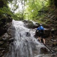 金剛山(二百)☆ハイキング以上 沢登り未満の丸滝