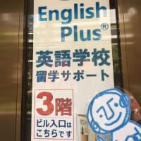 英語初級者のための1から学ぶ基礎英語トレーニング ~ 文法的に正しい英文を見分けよう!(初級レベル2・英語編)