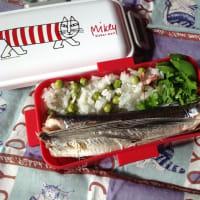 飛び魚弁当
