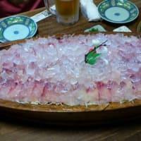 清水の鯉は日本一!
