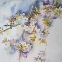 枝垂れ桜を描く