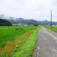 今日のウォーキング終了~!!(2019年7月15日)