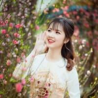 Sâm ngọc linh thần dược quý hiếm của Việt Nam