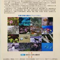 野生動物写真コンテスト