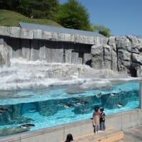 愛媛県立とべ動物園