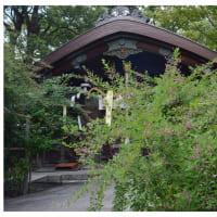 萩の咲く神社(梨木神社)