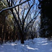 雪の秩父路を往く ~六番通り~