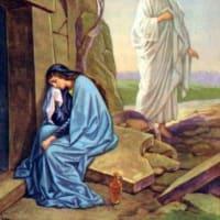 一時の涼・・・『キキョウの花』 そして 『イエスが「マリア」と言われると、マリアは振り向いて、「先生」と言った。』・・・『マグダラの聖マリアの祝日』