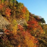 冠雪した南アルプスと紅葉