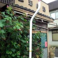 コイコイ商店 (喫茶店/タイ料理/民芸品)