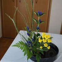 2019.9 瓶花、盛花 直立型
