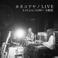 カネコアヤノ YOU TUBE LIVE 20200315