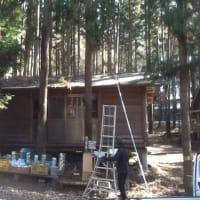 屋根の木の葉落とし
