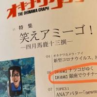 【いろいろ】オキナワグラフ連載スタート!