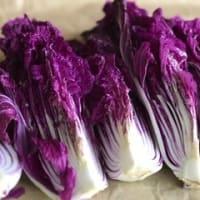 紫白菜の棒寿司